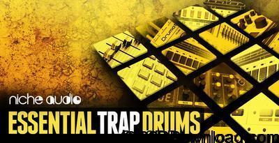 Niche Audio Essential Trap Drums Ableton 9.6+