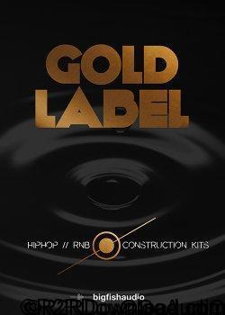 Big Fish Audio Gold Label Hip Hop and RnB MULTiFORMAT