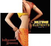 Big Fish Audio BOLLYWOOD LIBRARY COMBO PACK