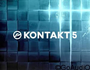 Native Instruments Kontakt v5.7.3 Free Download