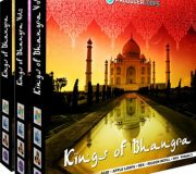 PRODUCER LOOPS KINGS OF BHANGRA BUNDLE (VOLS 1-3)