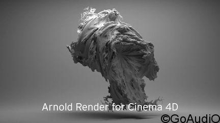 Solid Angle Cinema4D To Arnold 2.2.4 for Cinema4D free download