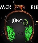 AudioJungle 2018 Summer Bundle