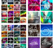 Native Instruments Expansions Pack v2.0.0 / v2.0.1 (WIN-OSX)