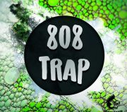 WA Production 808 Trap Angry Parrot