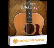 Evolution Jumbo 12 KONTAKT