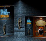 Indiginus Blue Street Brass KONTAKT