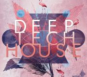 Wave alchemy Deep Tech House Multi-Format