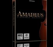 Amadeus Symphonic Orchestra KONTAKT