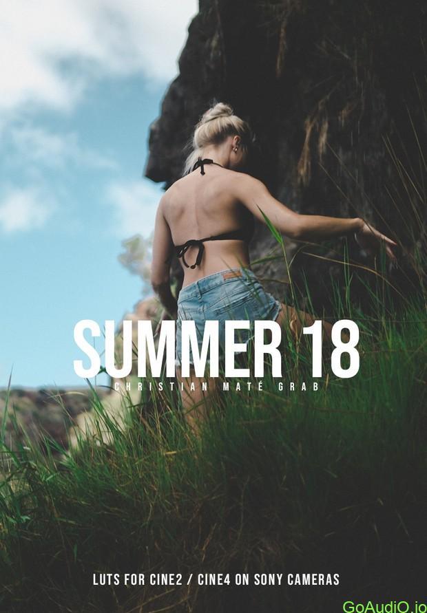 SUMMER 18 LUTs Free Download [WIN-MAC] | Go AudiO