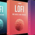 Cymatics The Ultimate Lofi Collection