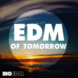 Big EDM EDM Of Tomorrow WAV MIDI FXB SBF