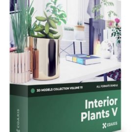 CGAxis Volume 111 Interior Plants 3D Models Collection Free Download