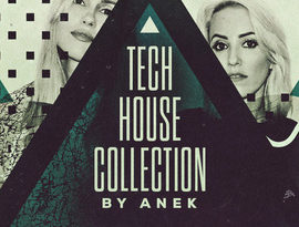 Loopmasters Anek The Tech House Collection WAV REX