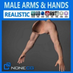 3D Adult Male Arms and Hands Rigged Free Download