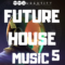 Audentity – Future House Music 5 WAV MiDi FXP
