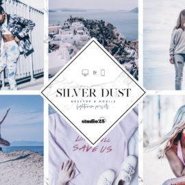 CreativeMarket 2 Silver lightroom presets 4007319 Free Download