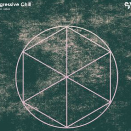 Sample Magic White Label Progressive Chill WAV MiDi