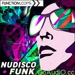 Function Loops – Nu-Disco & Funk with Live Guitars Wav