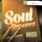 Toontrack Soul Grooves MiDi WiN MAC