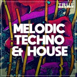 True Samples – Melodic Techno & House WAV MIDi Spire