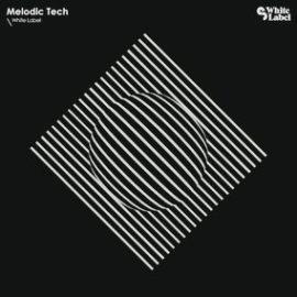 White Label Melodic Tech WAV MiDi