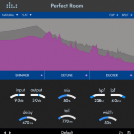 Denise Perfect Room v1.0.0 [WIN-MAC]