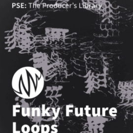 PSE The Producer's Library Funky Future Loops WAV