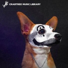 Crabtree Music Library Vol. 17 (Compositions And Stems) WAV