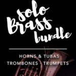 Audio Modeling SWAM Solo Brass Bundle v1.0.0 [WIN]