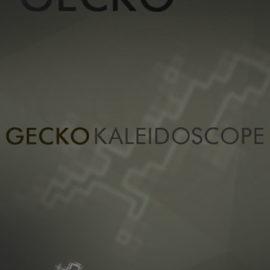 Cinematique-Instruments GECKO Kaleidoscope v1.5 KONTAKT
