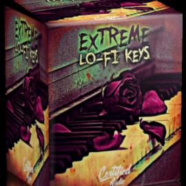 Certified Audio – Extreme Lo-Fi Keys WAV