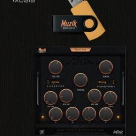 Infinit Essentials Muzik Box (VST AU) [WIN-MAC]
