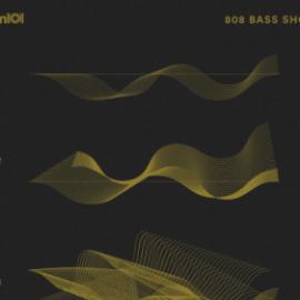 Sample Magic 808 Bass Shots WAV