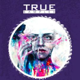 True Samples Midnight Melodic Techno WAV MiDi SPiRE