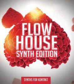 8Dio 8DM Flow House Synth Edition KONTAKT