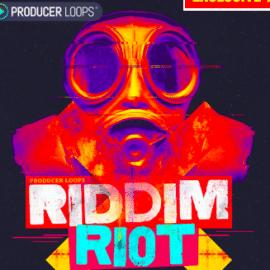 Producer Loops Riddim Riot