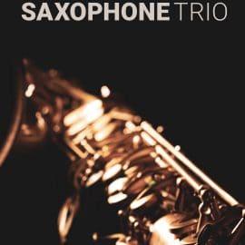 8Dio Studio Saxophones v1.2 KONTAKT