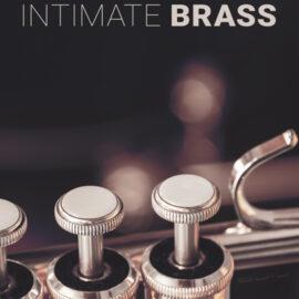 8dio Intimate Studio Brass KONTAKT