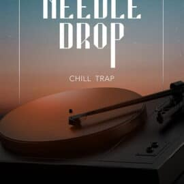 Big Fish Audio Needle Drop: Chill Trap MULTiFORMAT