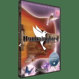 Prominy Hummingbird v1.22 KONTAKT