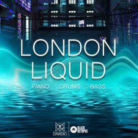 Black Octopus Sound Dawdio: London Liquid WAV MIDI